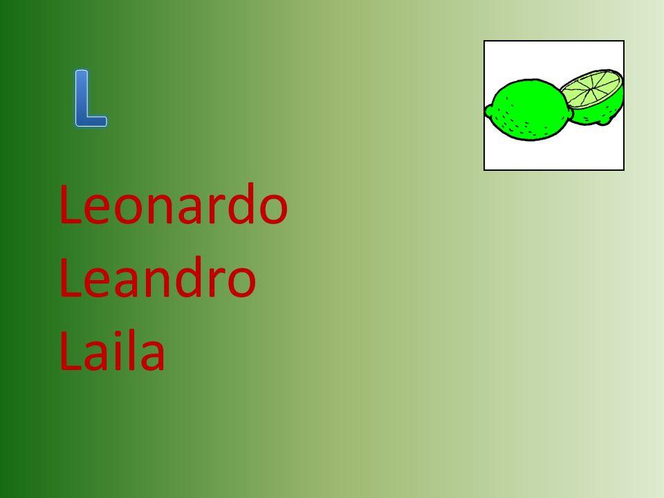 Leonardo Leandro Laila