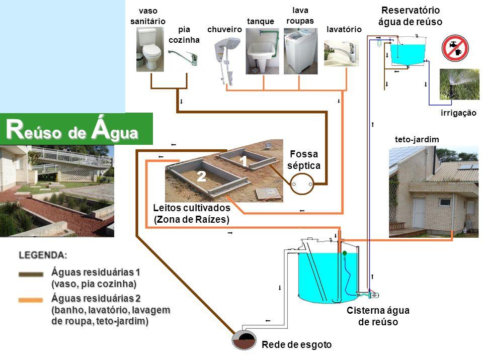 Reservatório água de reúso Leitos cultivados (Zona de Raízes)