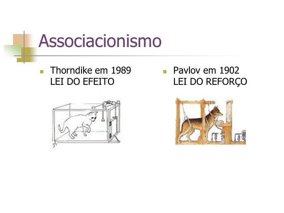 Associacionismo Thorndike em 1989 LEI DO EFEITO