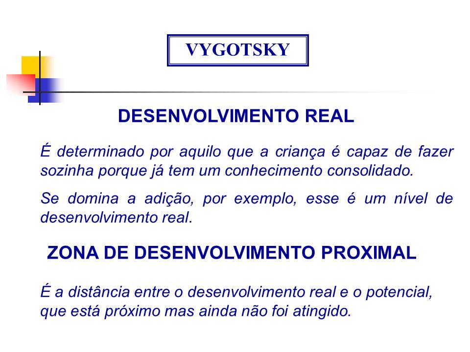 ZONA DE DESENVOLVIMENTO PROXIMAL