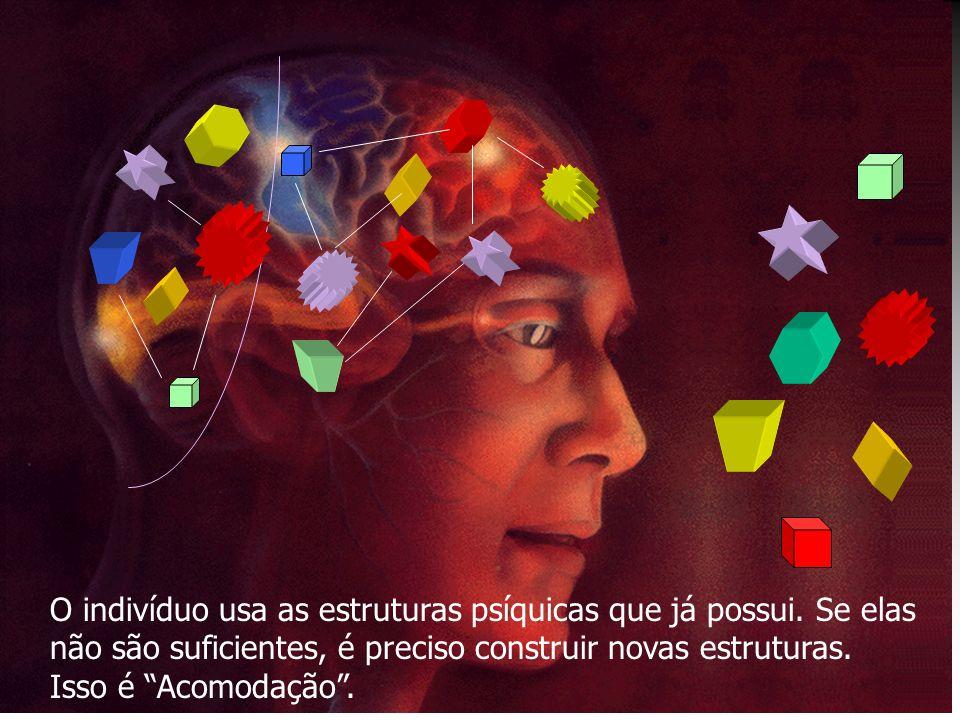 O indivíduo usa as estruturas psíquicas que já possui