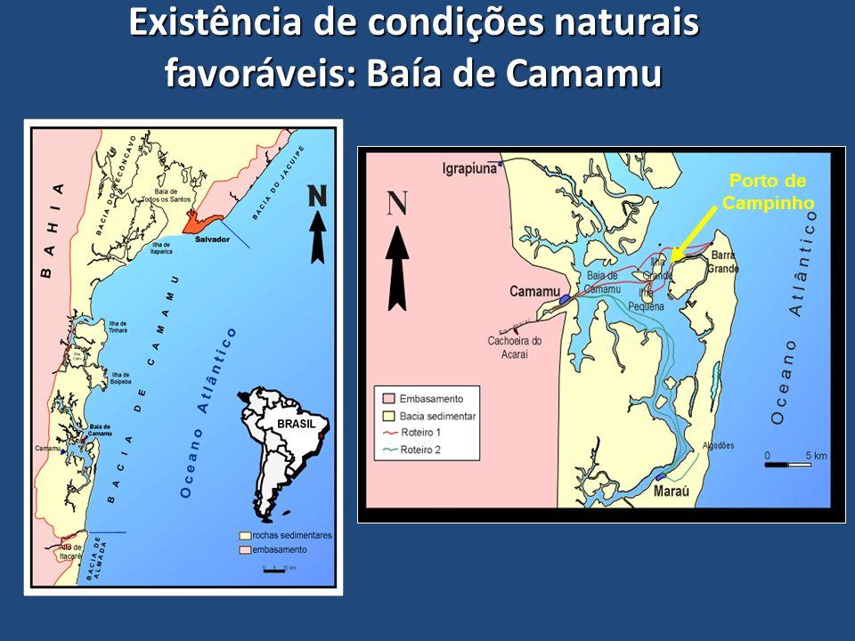 Existência de condições naturais favoráveis: Baía de Camamu