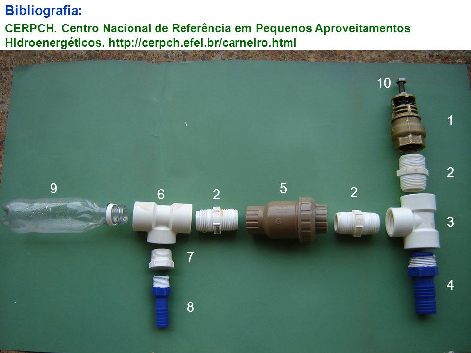 Bibliografia: CERPCH. Centro Nacional de Referência em Pequenos Aproveitamentos Hidroenergéticos. http://cerpch.efei.br/carneiro.html.