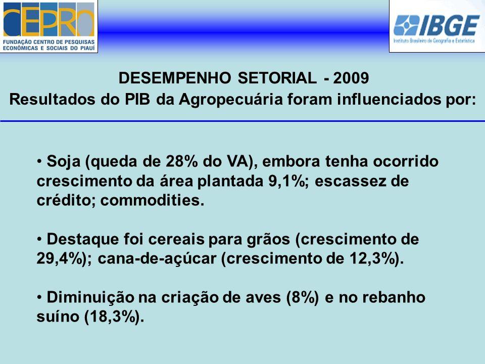 Resultados do PIB da Agropecuária foram influenciados por: