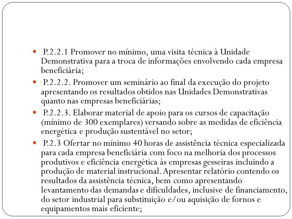 P.2.2.1 Promover no mínimo, uma visita técnica à Unidade Demonstrativa para a troca de informações envolvendo cada empresa beneficiária;