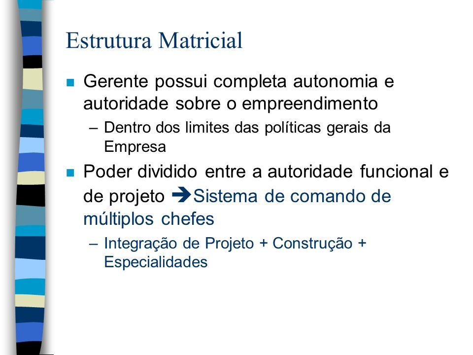 Estrutura Matricial Gerente possui completa autonomia e autoridade sobre o empreendimento. Dentro dos limites das políticas gerais da Empresa.