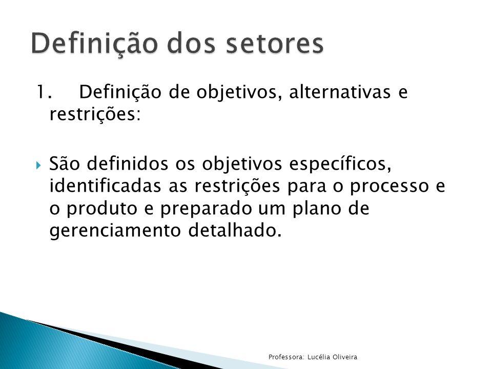 Definição dos setores 1. Definição de objetivos, alternativas e restrições:
