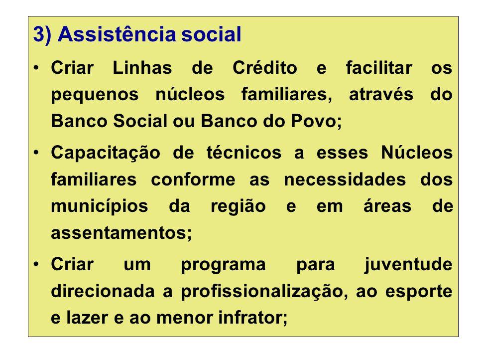 3) Assistência social Criar Linhas de Crédito e facilitar os pequenos núcleos familiares, através do Banco Social ou Banco do Povo;