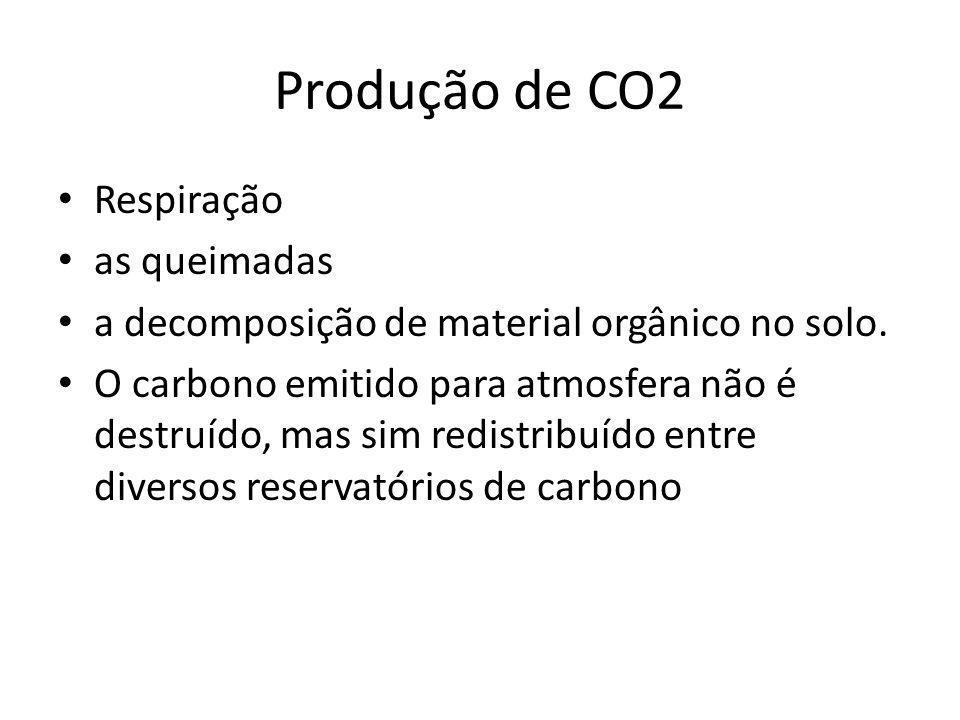 Produção de CO2 Respiração as queimadas