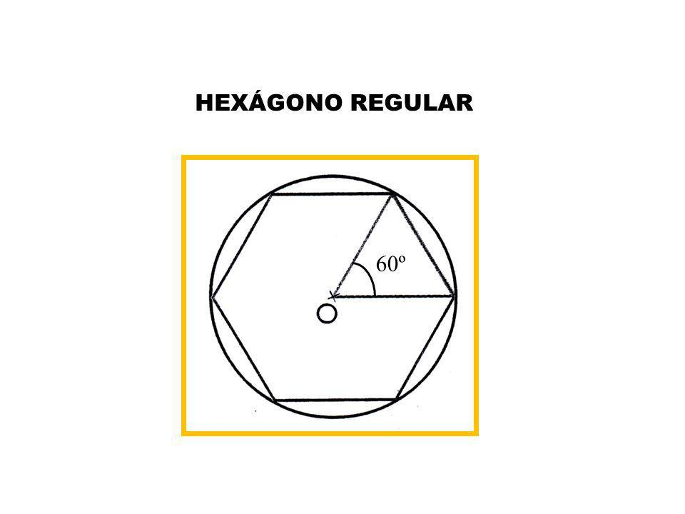 HEXÁGONO REGULAR 60º