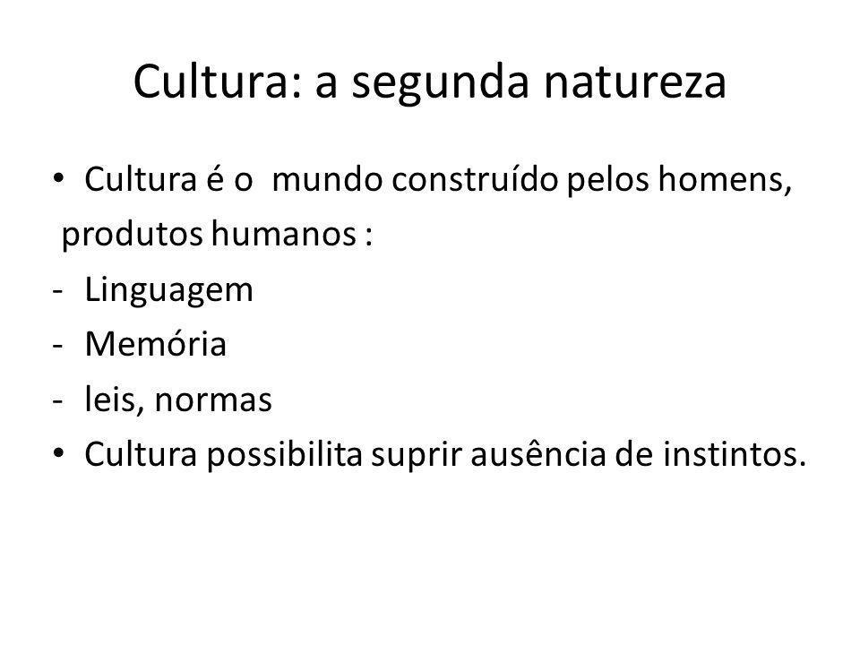 Cultura: a segunda natureza