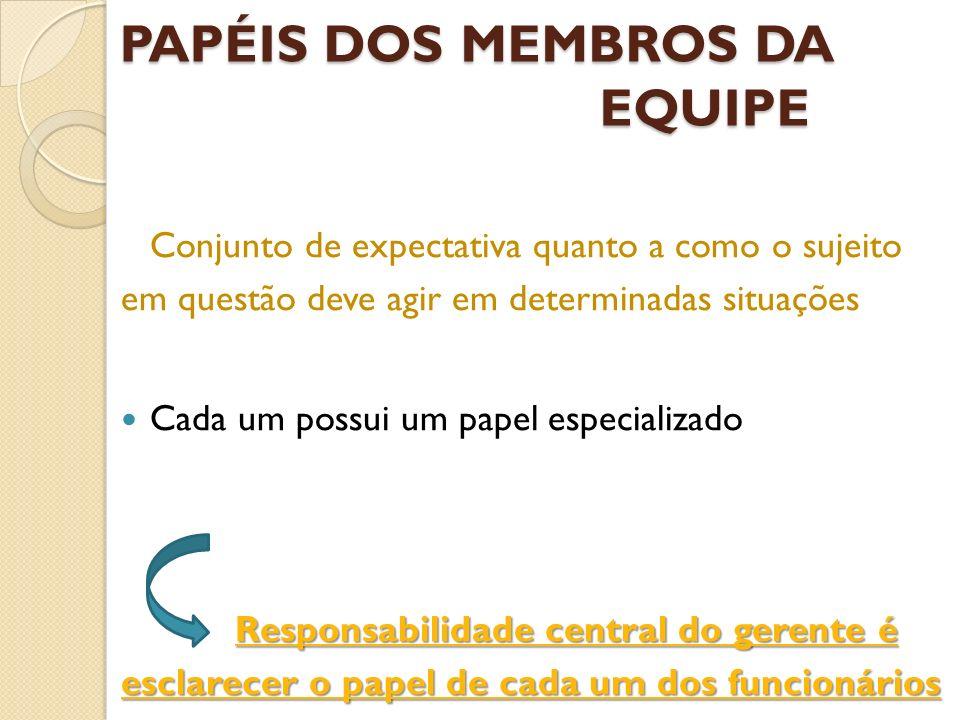 PAPÉIS DOS MEMBROS DA EQUIPE