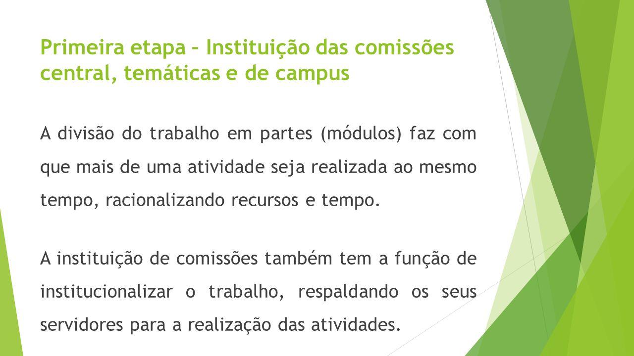 Primeira etapa – Instituição das comissões central, temáticas e de campus