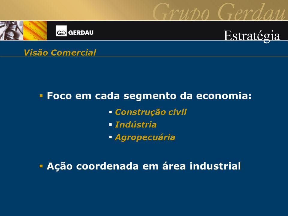 Estratégia Foco em cada segmento da economia:
