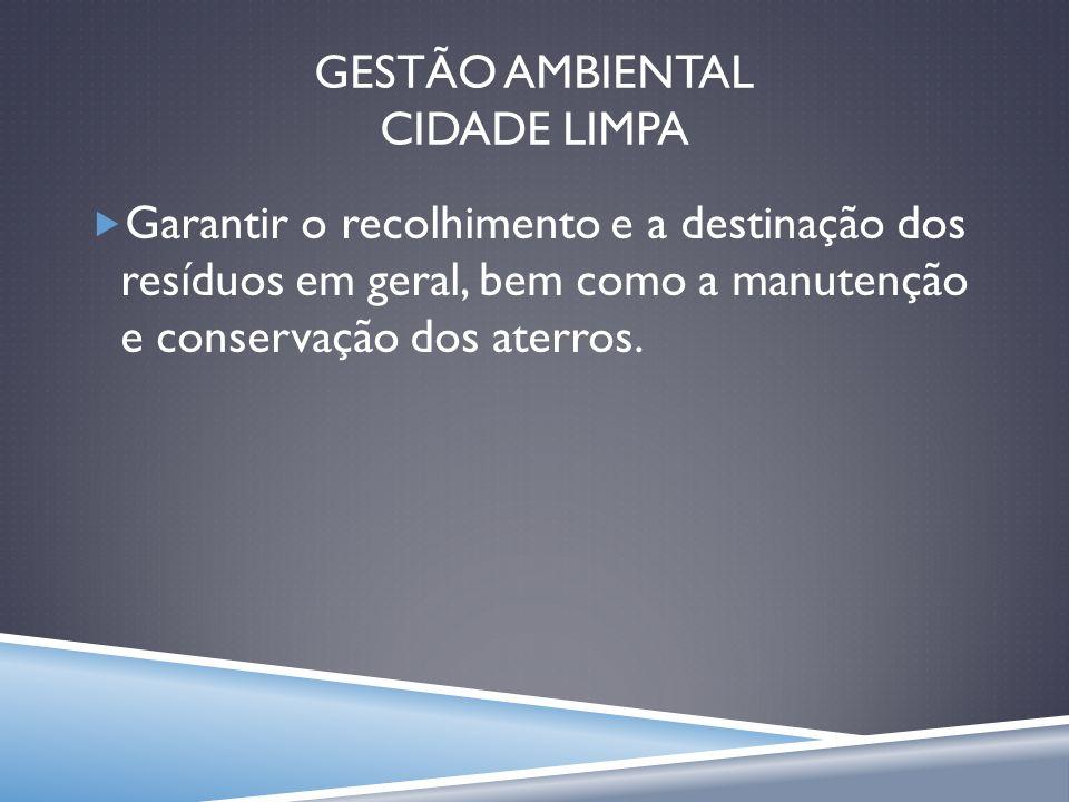 Gestão ambiental CIDADE LIMPA