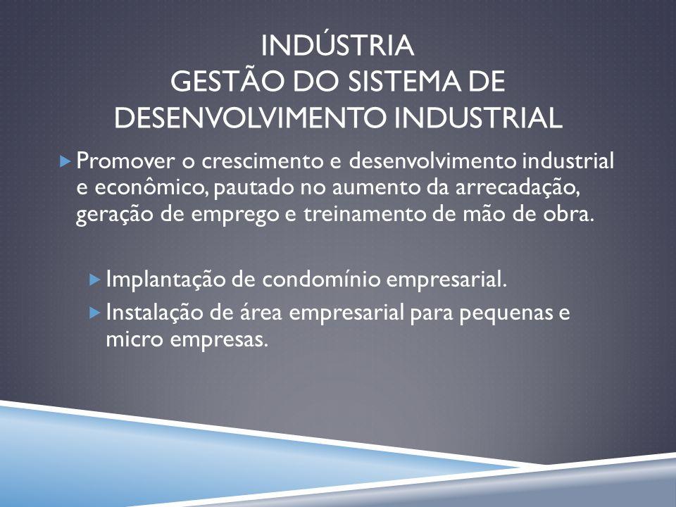 INDÚSTRIA GESTÃO DO SISTEMA DE DESENVOLVIMENTO INDUSTRIAL