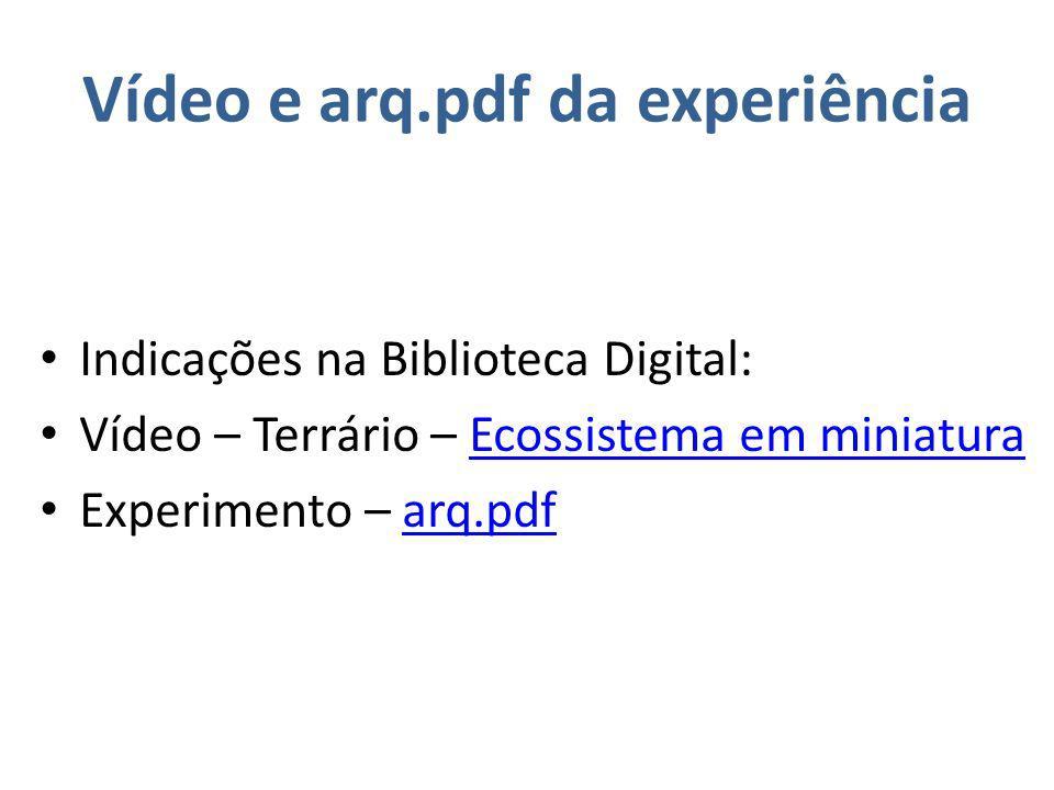 Vídeo e arq.pdf da experiência