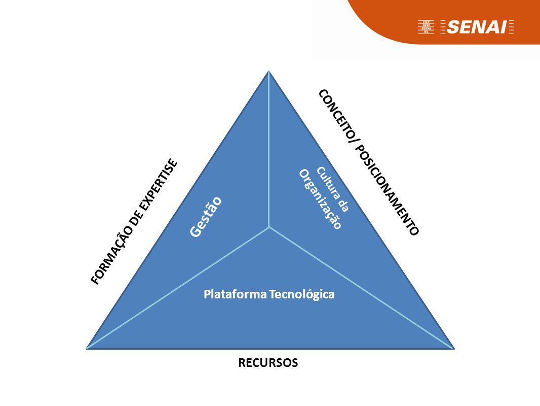 Processos Capacidade de inovar da empresa para atender ao perfil do novo consumidor. Soluções em serviço para o processo produtivo.