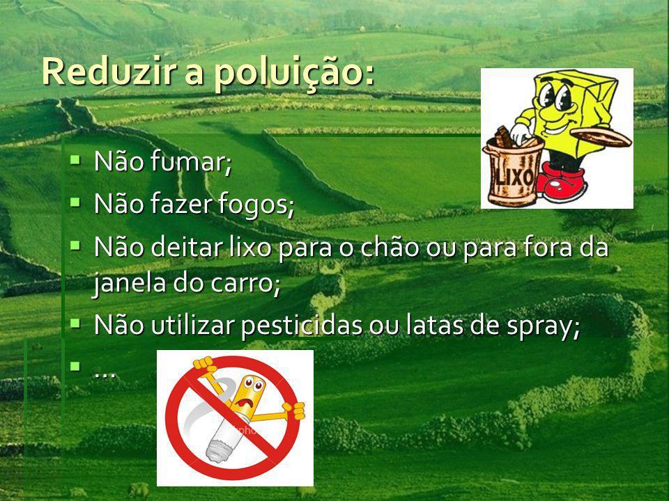 Reduzir a poluição: Não fumar; Não fazer fogos;