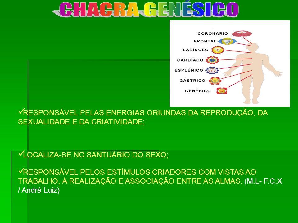 CHACRA GENÉSICO RESPONSÁVEL PELAS ENERGIAS ORIUNDAS DA REPRODUÇÃO, DA SEXUALIDADE E DA CRIATIVIDADE;