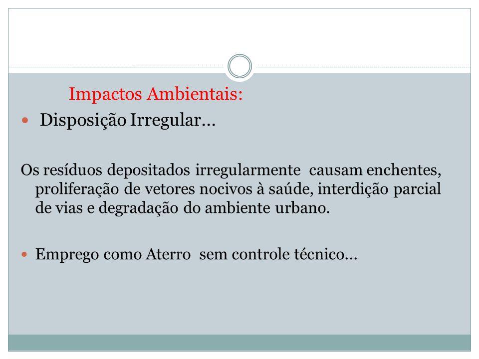 Impactos Ambientais: Disposição Irregular...