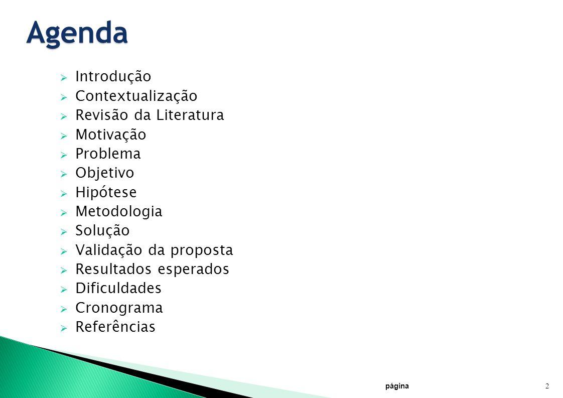 Agenda Introdução Contextualização Revisão da Literatura Motivação