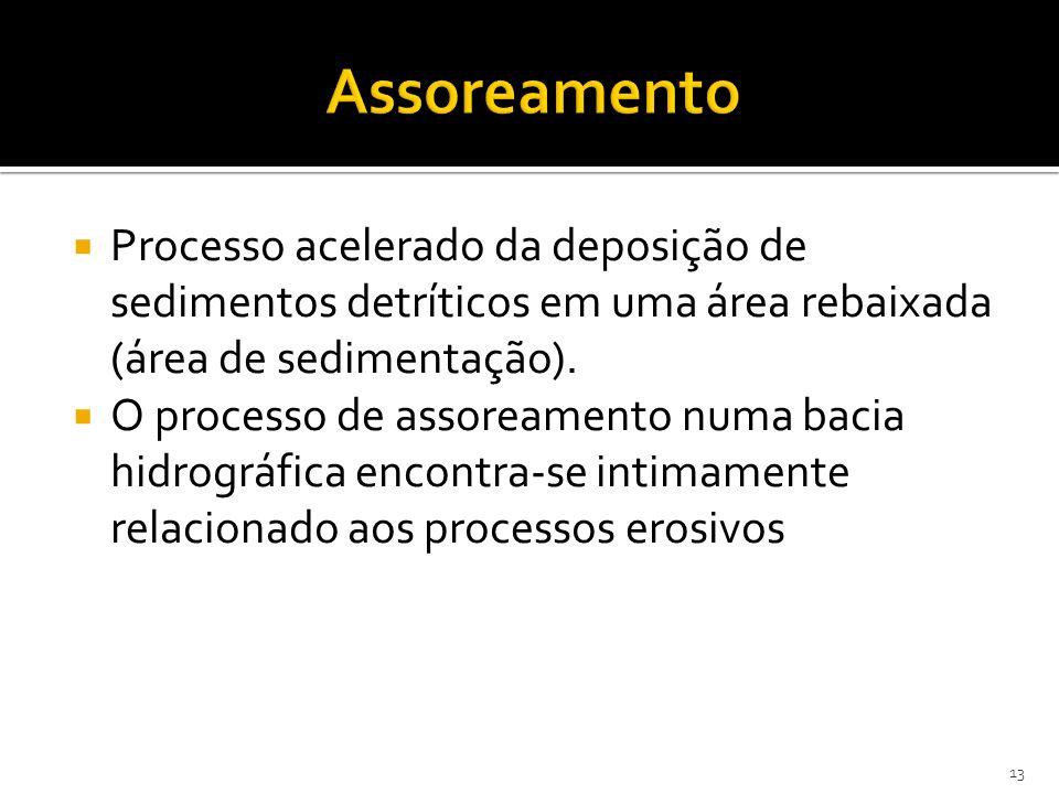 Assoreamento Processo acelerado da deposição de sedimentos detríticos em uma área rebaixada (área de sedimentação).
