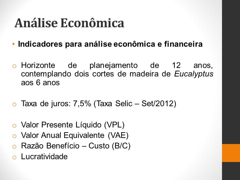 Análise Econômica Indicadores para análise econômica e financeira