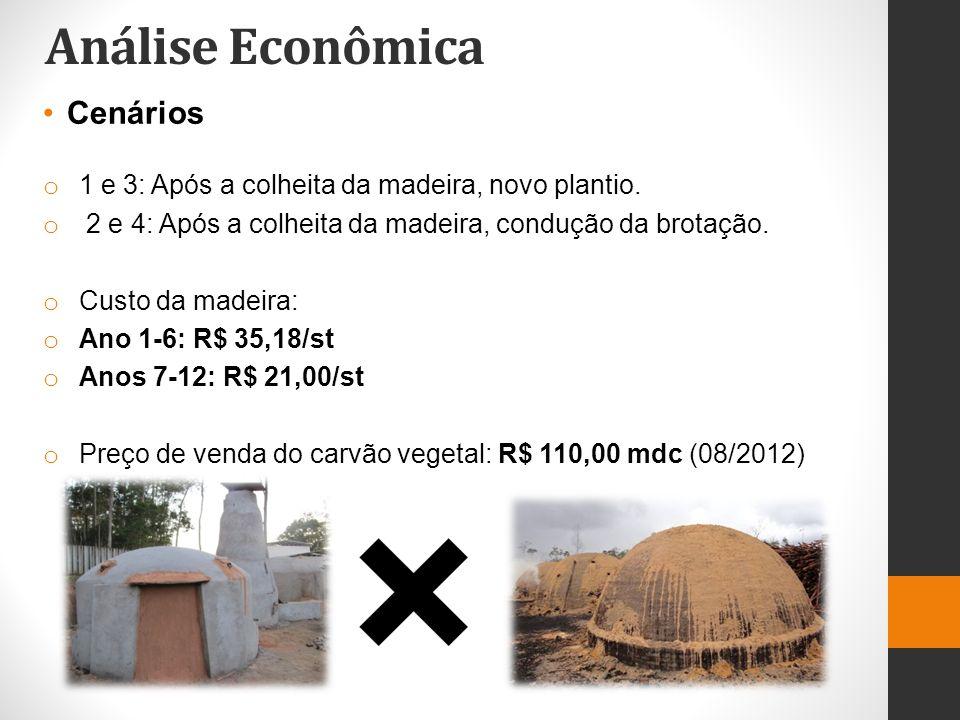 Análise Econômica Cenários