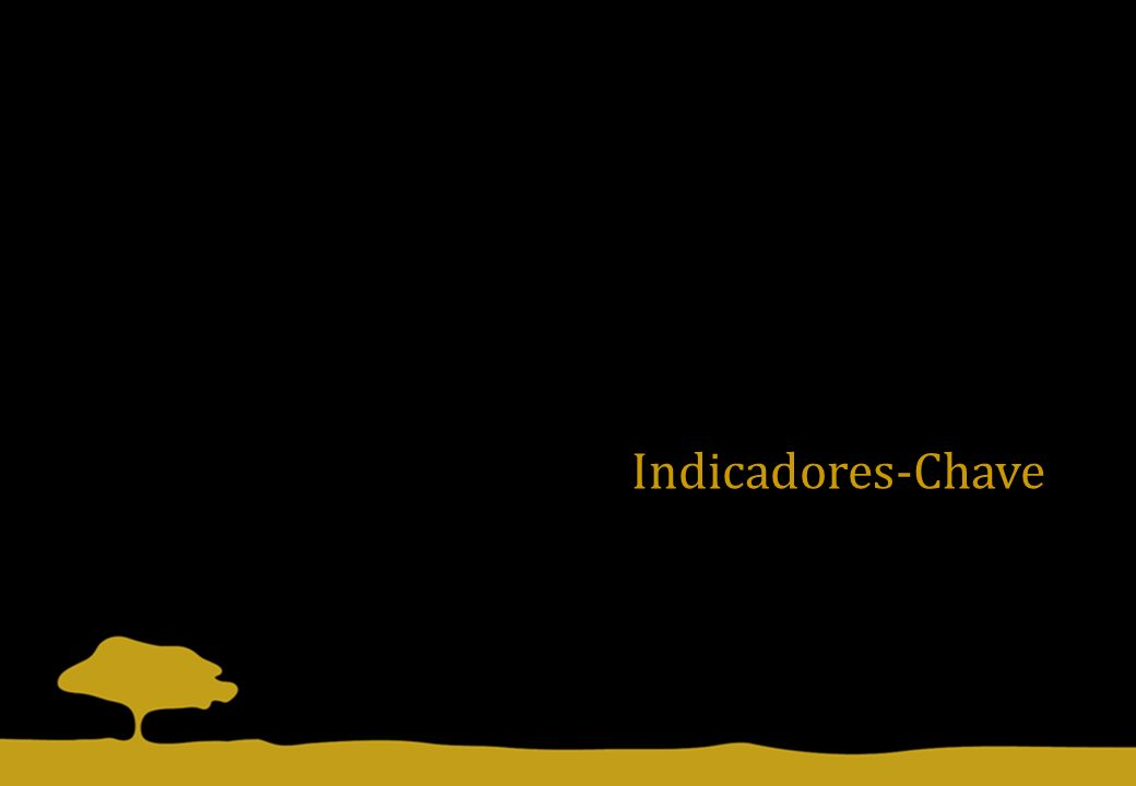 Indicadores-Chave