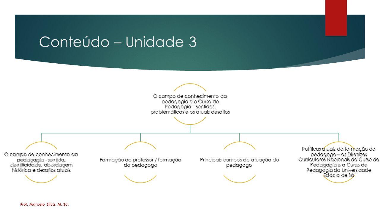 Conteúdo – Unidade 3 O campo de conhecimento da pedagogia e o Curso de Pedagogia – sentidos, problemáticas e os atuais desafios.