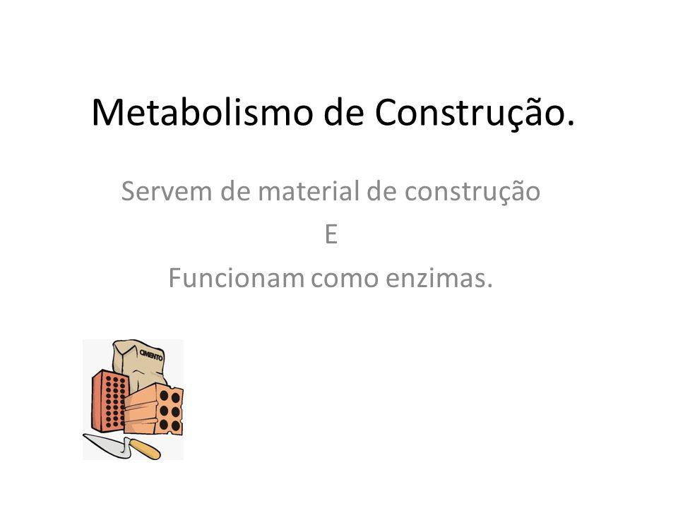Metabolismo de Construção.