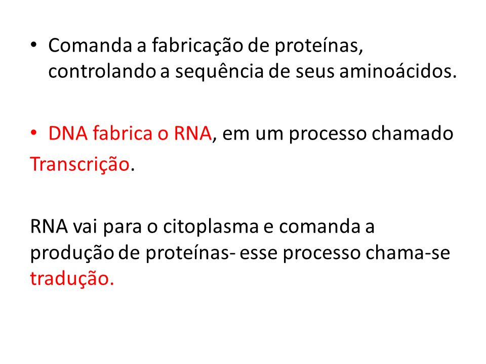 Comanda a fabricação de proteínas, controlando a sequência de seus aminoácidos.