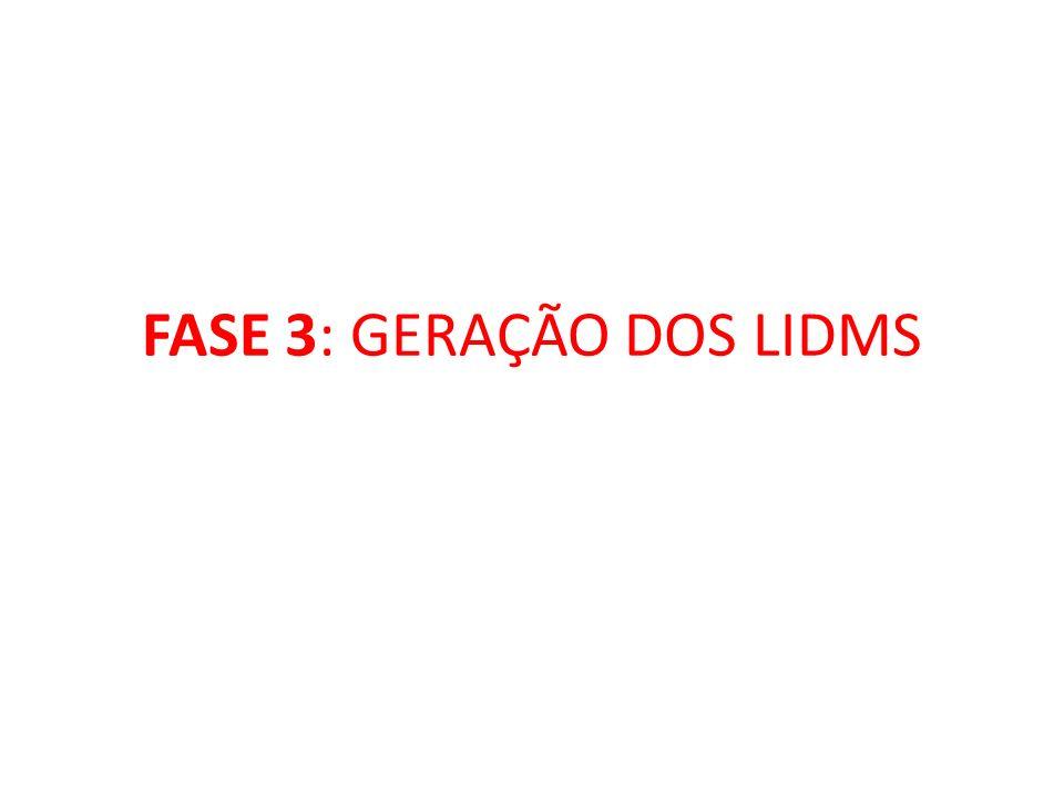 FASE 3: GERAÇÃO DOS LIDMS