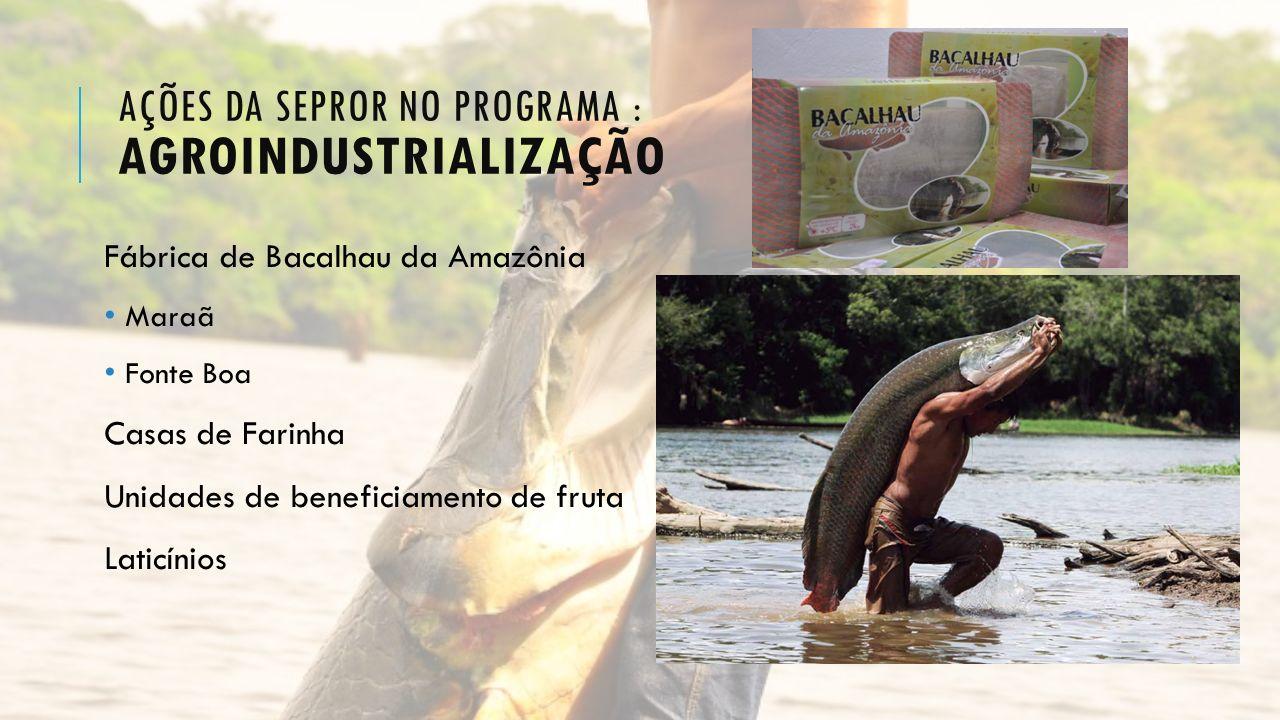 Ações da Sepror no programa : agroindustrialização