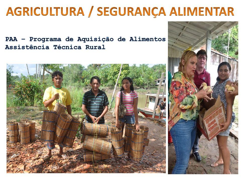 AGRICULTURA / SEGURANÇA ALIMENTAR