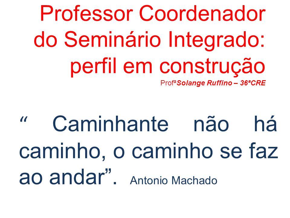 Professor Coordenador do Seminário Integrado: perfil em construção ProfªSolange Ruffino – 36ªCRE