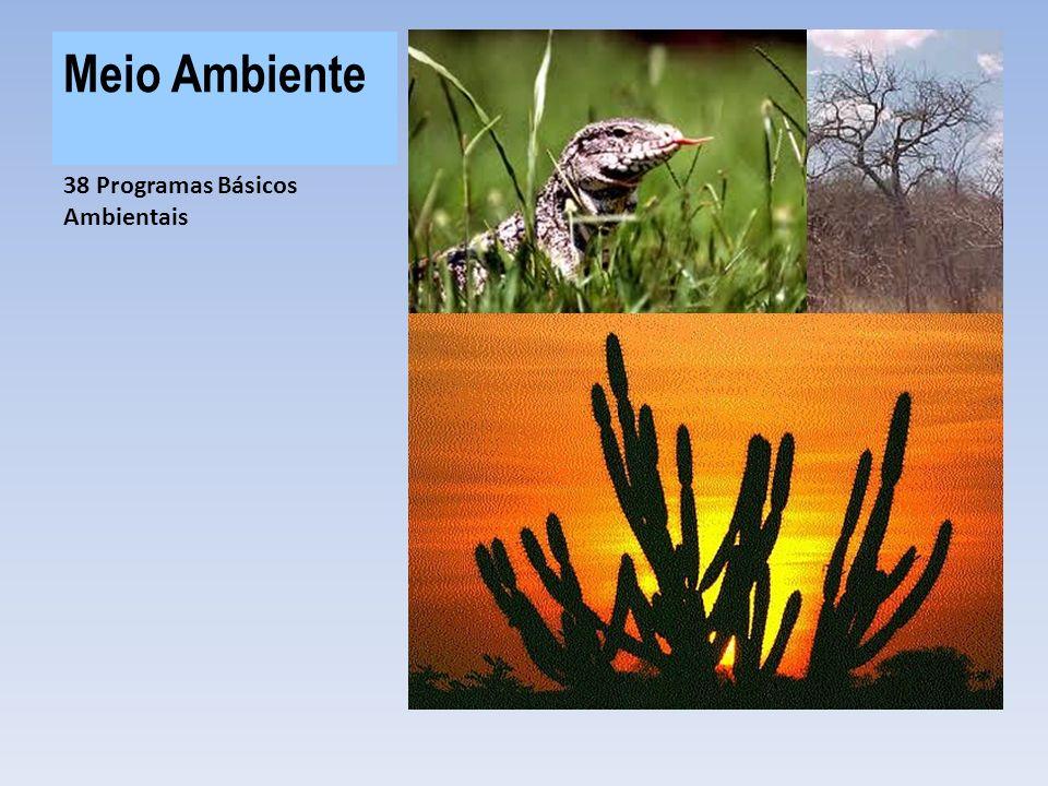 Meio Ambiente R$ 232,8 MI investidos no programas ambientais do PISF