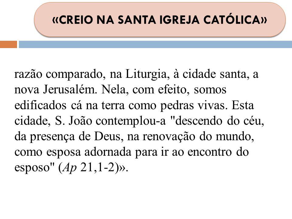 «CREIO NA SANTA IGREJA CATÓLICA»