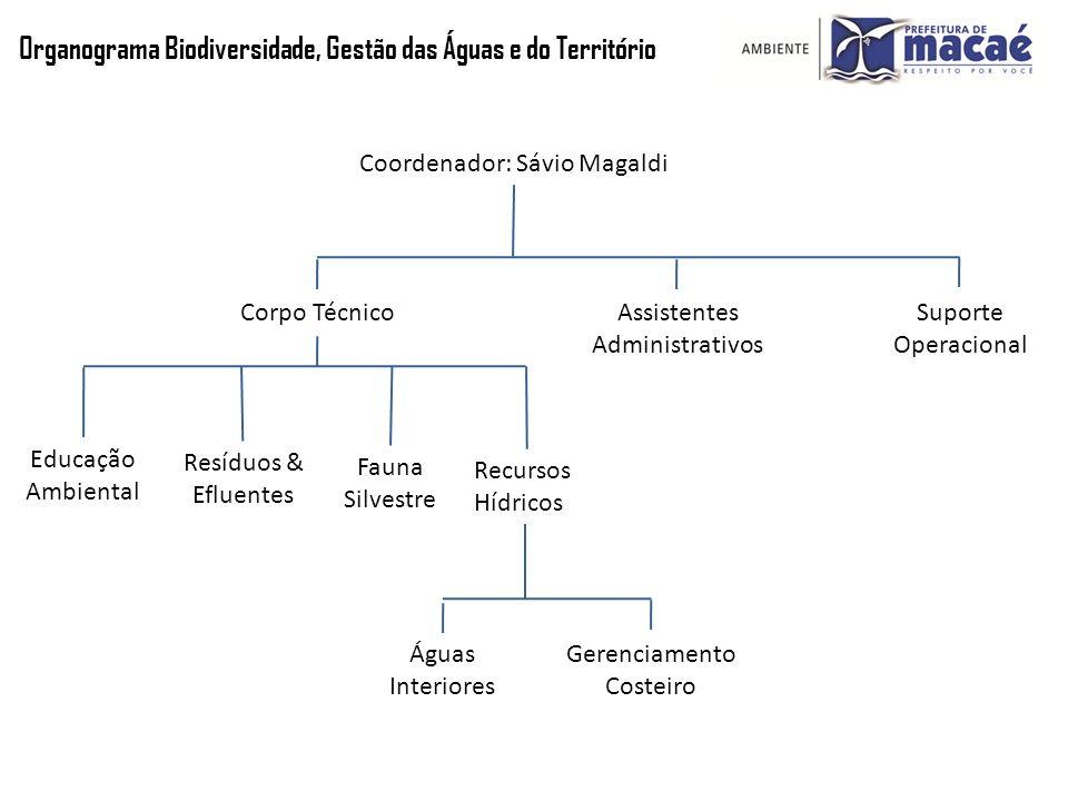 Organograma Biodiversidade, Gestão das Águas e do Território