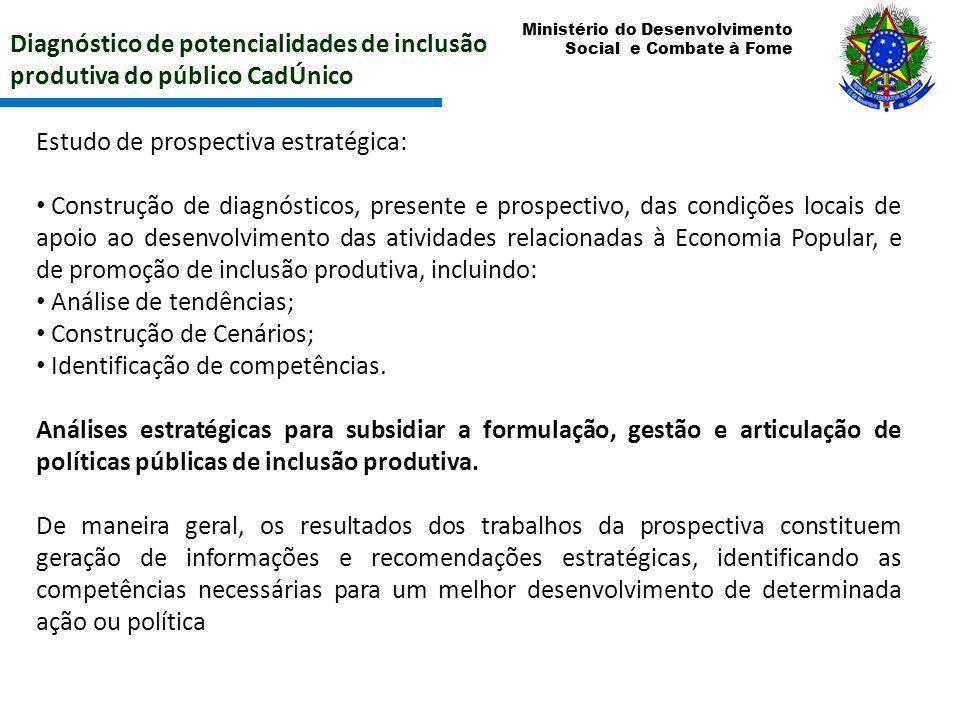 Diagnóstico de potencialidades de inclusão produtiva do público CadÚnico