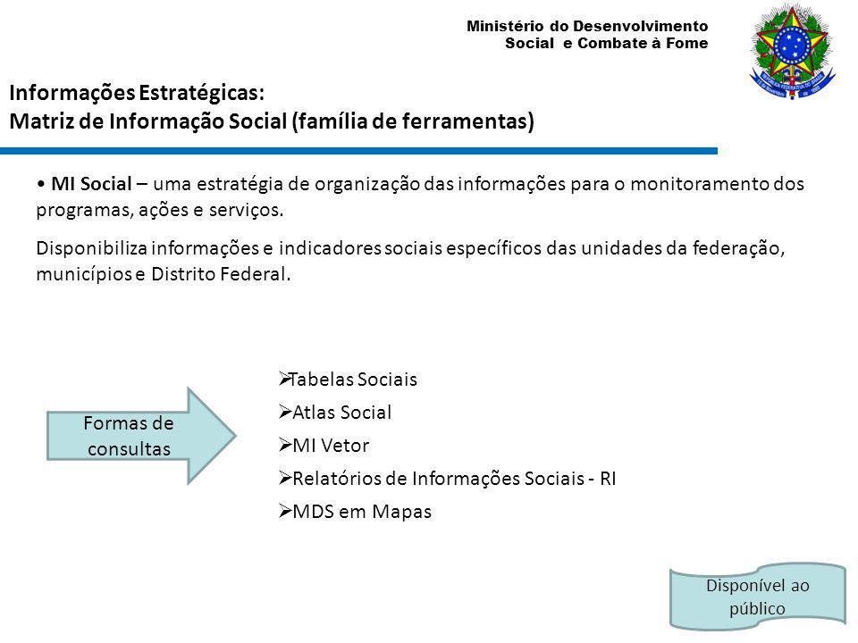 Informações Estratégicas: Matriz de Informação Social (família de ferramentas)