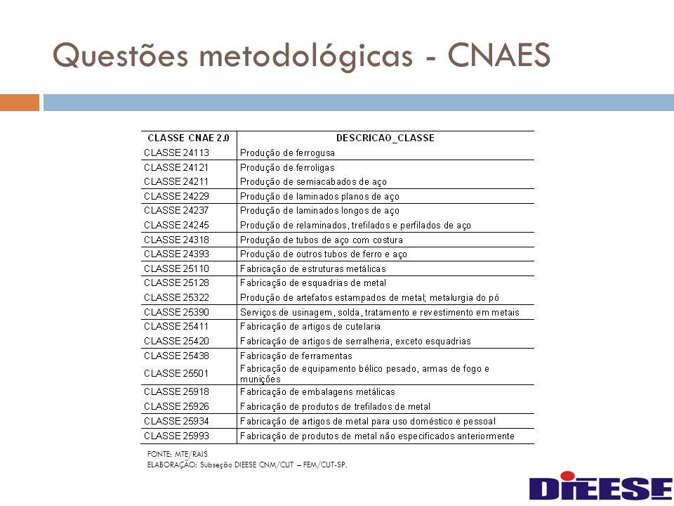 Questões metodológicas - CNAES