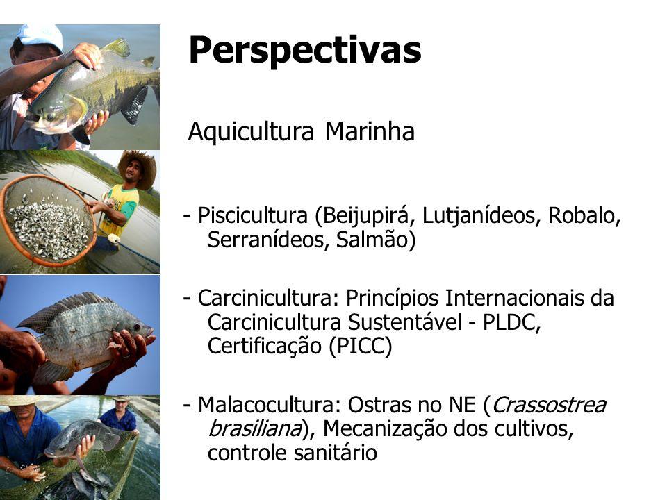 Perspectivas Aquicultura Marinha