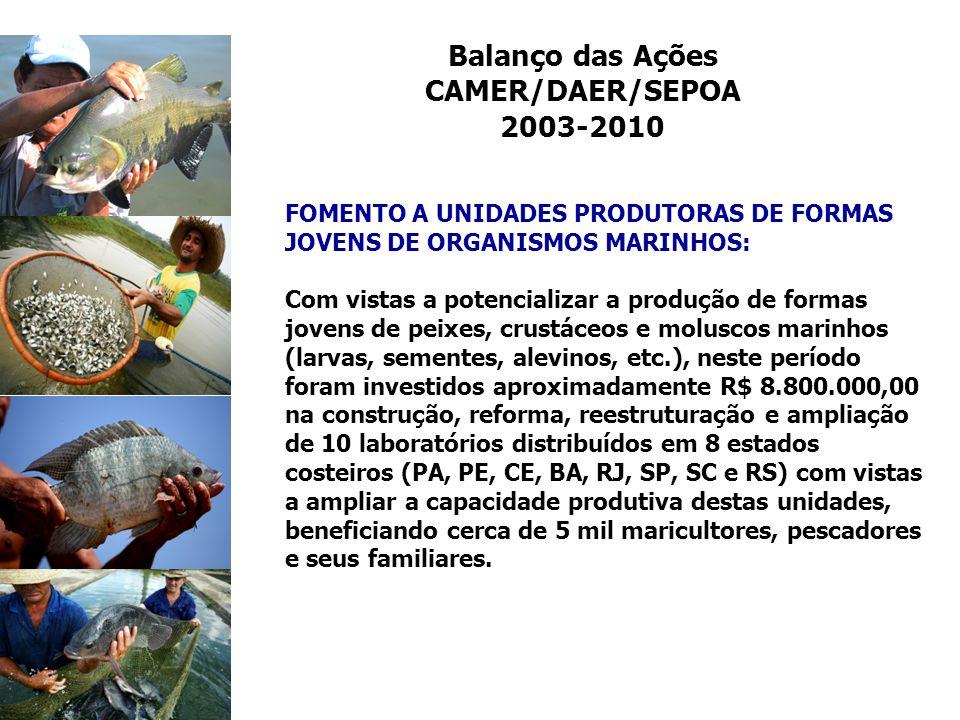 Balanço das Ações CAMER/DAER/SEPOA 2003-2010
