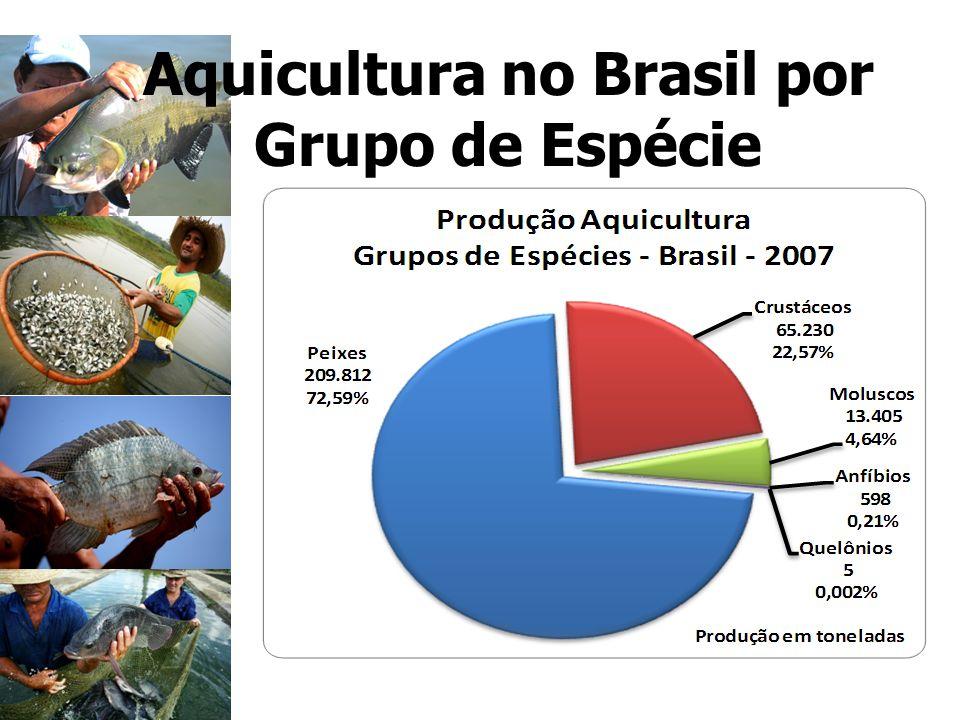 Aquicultura no Brasil por Grupo de Espécie