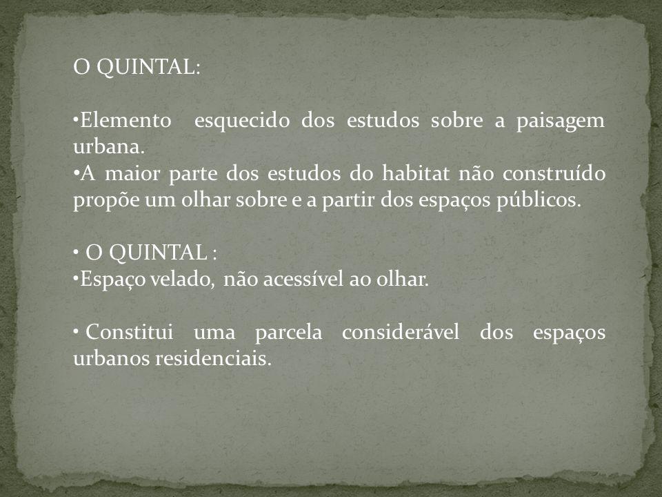 O QUINTAL: Elemento esquecido dos estudos sobre a paisagem urbana.