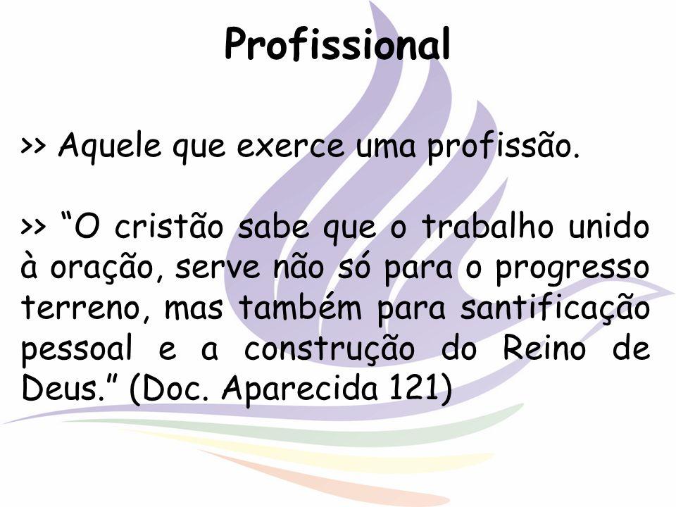 Profissional >> Aquele que exerce uma profissão.
