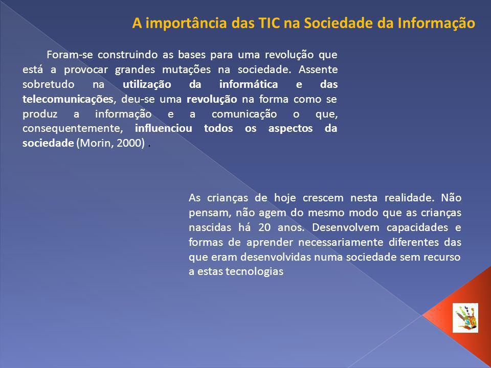 A importância das TIC na Sociedade da Informação