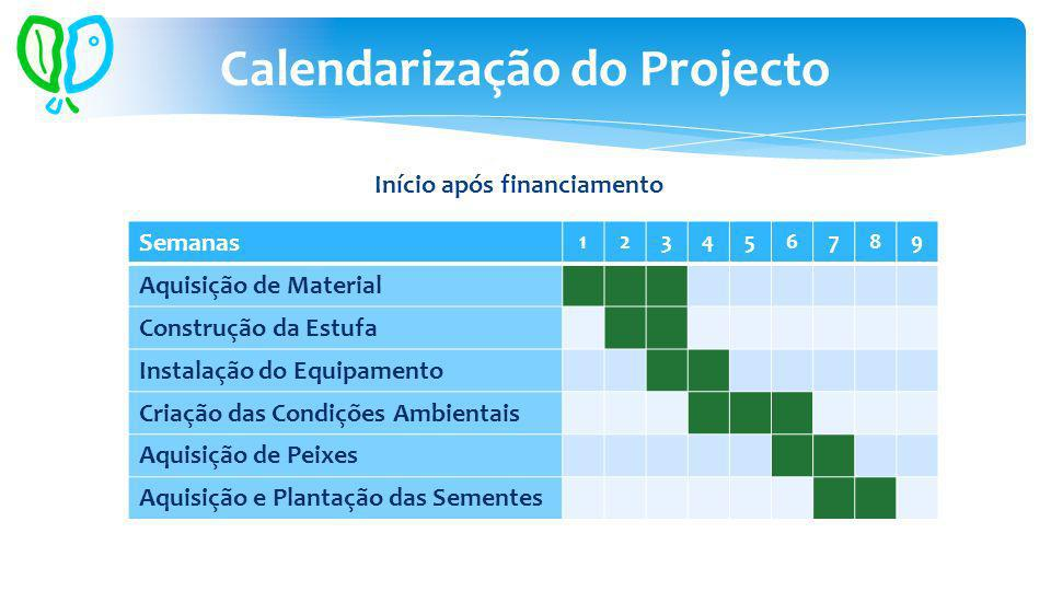 Calendarização do Projecto